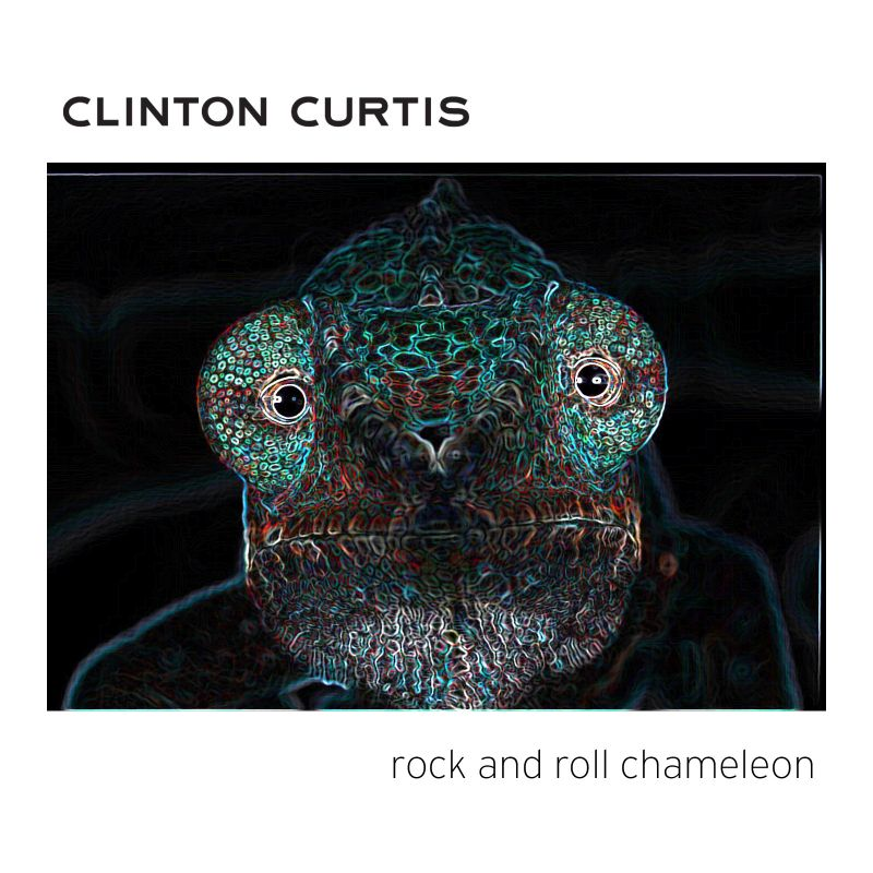 Rock N Roll Chameleon